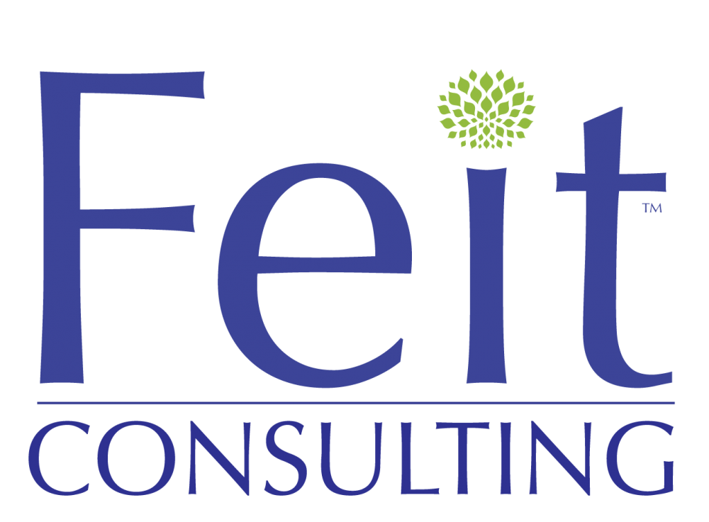 Feit Consulting